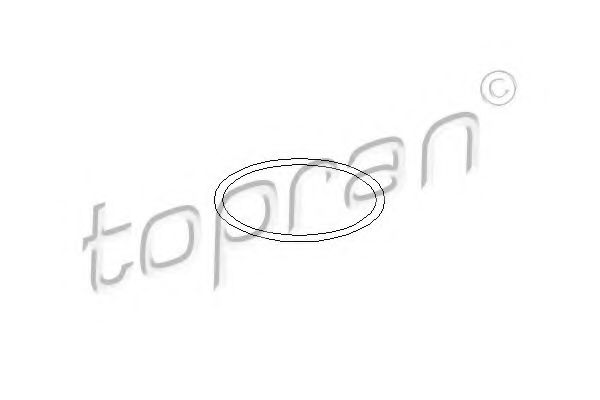 100 572 Cooling System Gasket, water pump