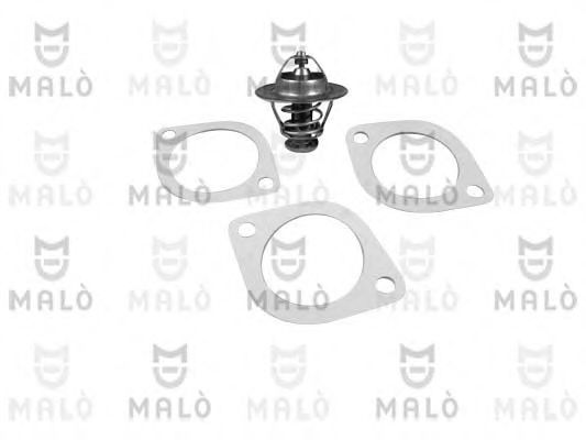 TER277 Thermostat, coolant
