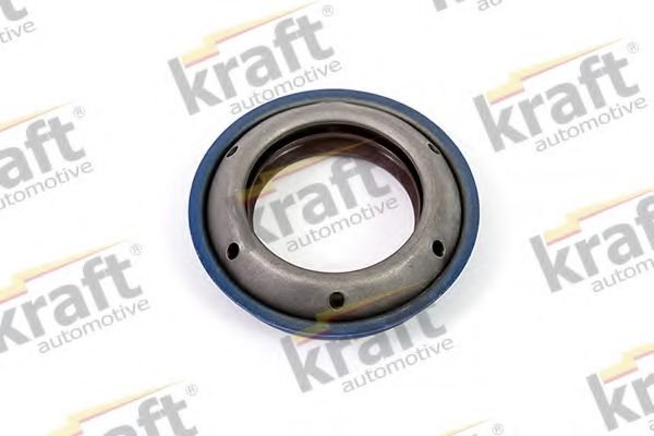 1151629 Shaft Seal, differential