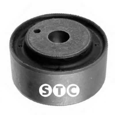 T406066 Mounting, differential